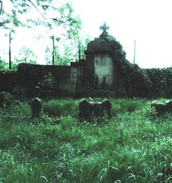 Cmentarz ewangelicki w Jarocinie
