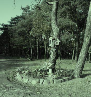 Echa publicznej egzekucji w Jarocinie, 24 maja 1946 r.