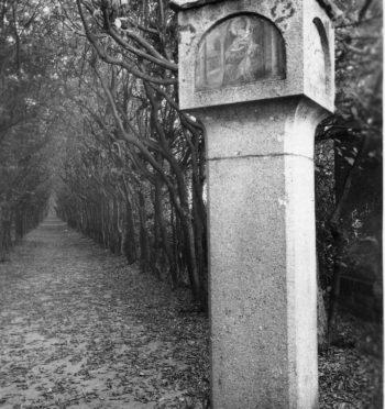 """Piotr Marchwiak, """"Tajemniczy obelisk księżnej Joanny"""""""
