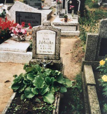 """Gizela Chmielewska, """"Michał Jabłoński, czyli adres w Ciświcy, grób w Dormans"""""""